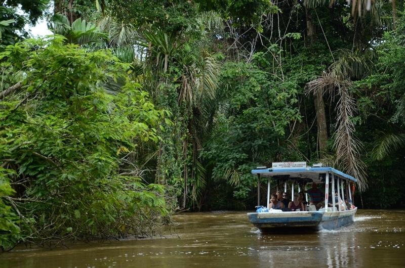 Bootsfahrt im Regenwald