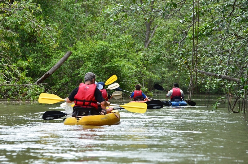 tag 12 Kayaking als Ausflugsaktivität