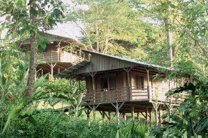 Abenteuerpaket Selva Bananito