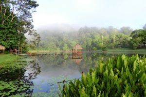 Naturparadies Río San Carlos