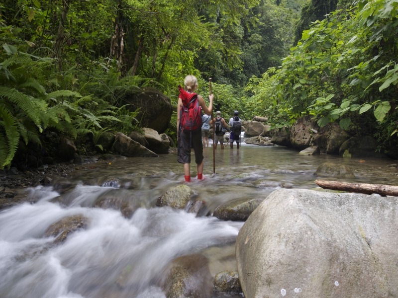 Selva Bananito Lodge, Karibik